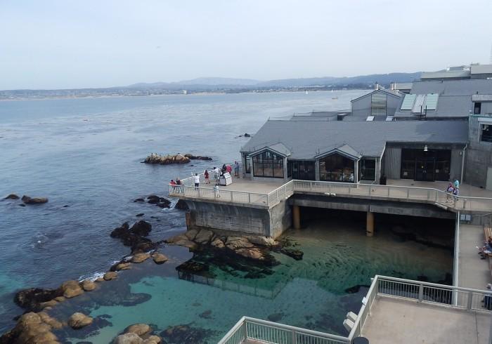 Aquário Monterey